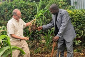 Project: Agricultural Consultancy – East Africa